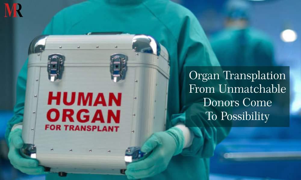 Different Organs